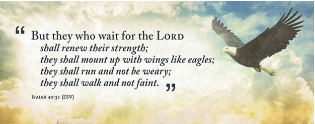 Wings Like Eagles